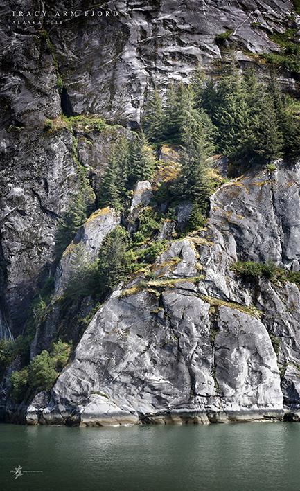 tracyarmfjord-04